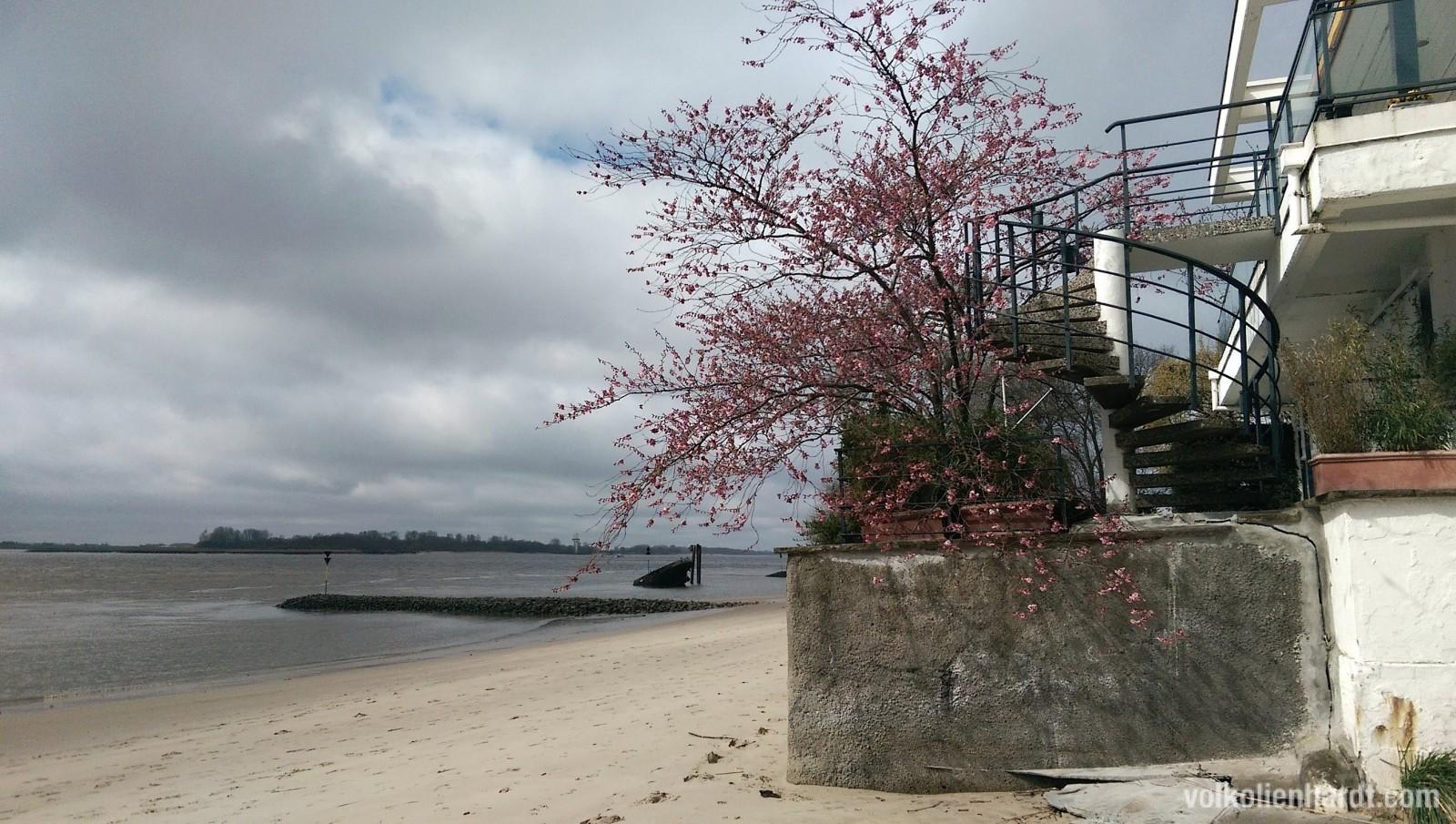 Strand in Blankenese