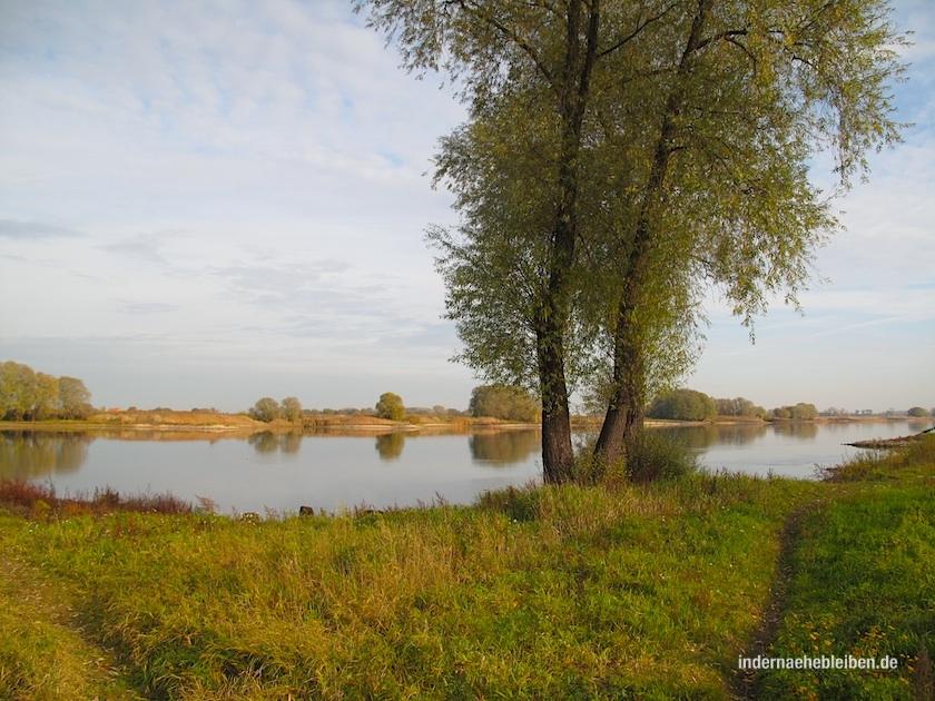 Auenland Wendland