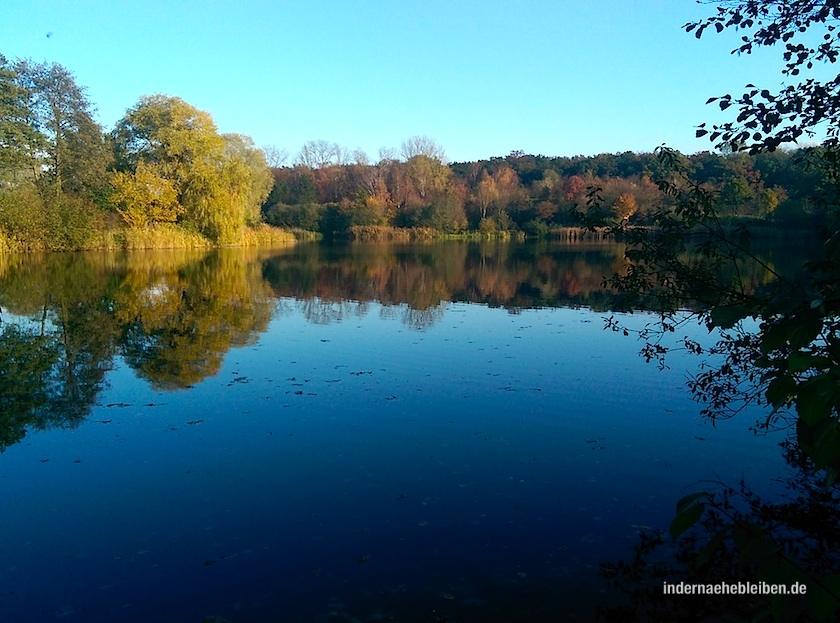 See in Dannenberg