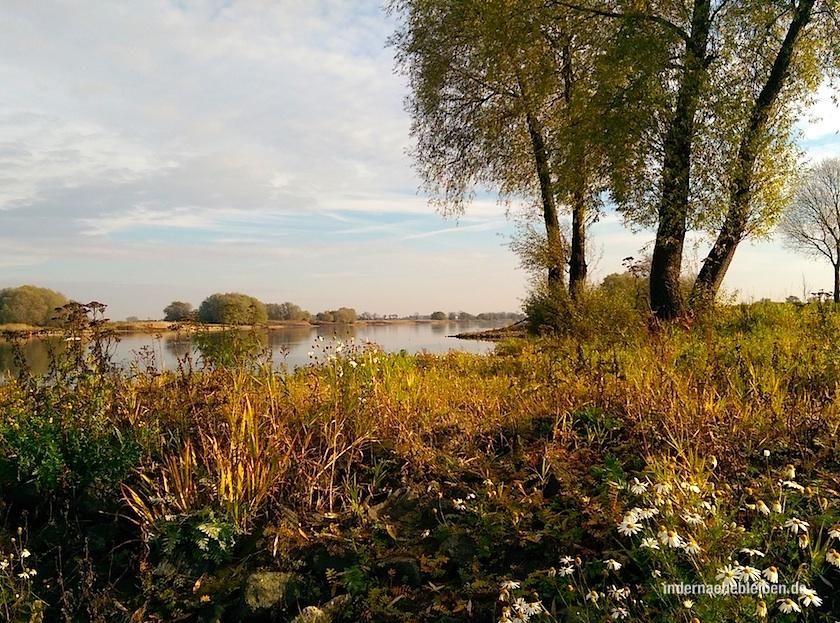 Urstromtal Elbe