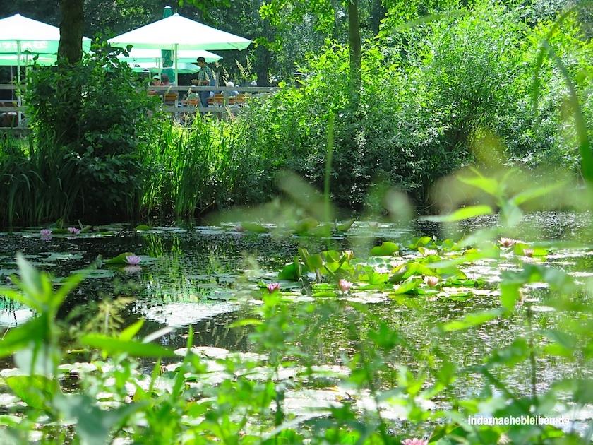 Moorgarten Hagenburg