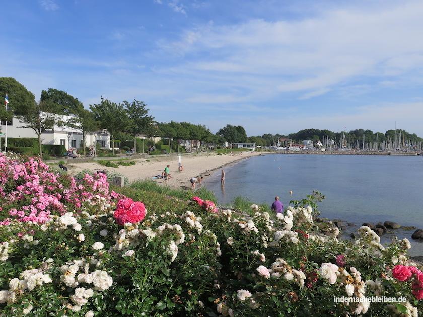 Moeltenort Strand