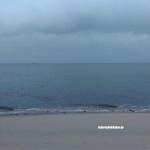 Austernbaenke Sylt
