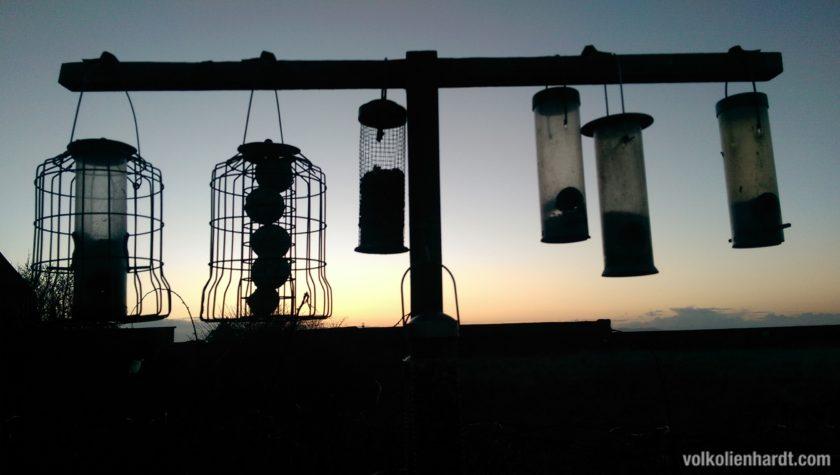 Birds Bistro