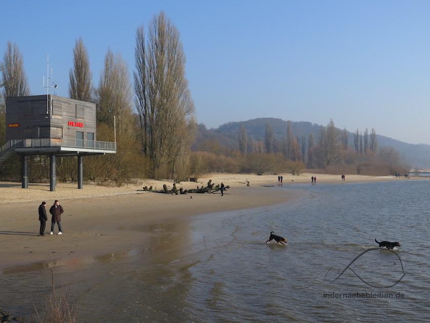 Strand von Wittenbergen