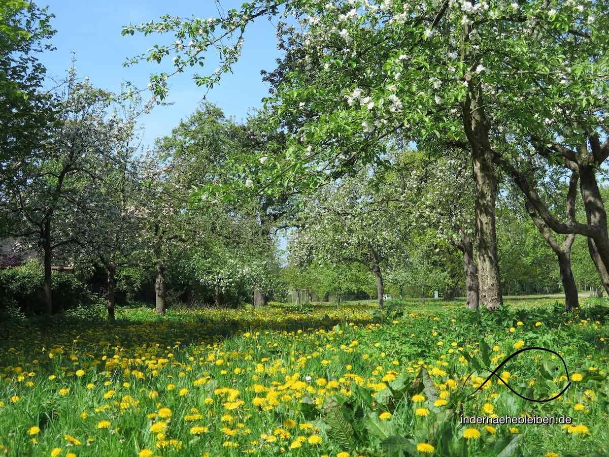 Hamburgs schoenste Parks