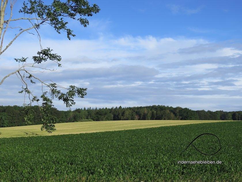 Schwedeneck