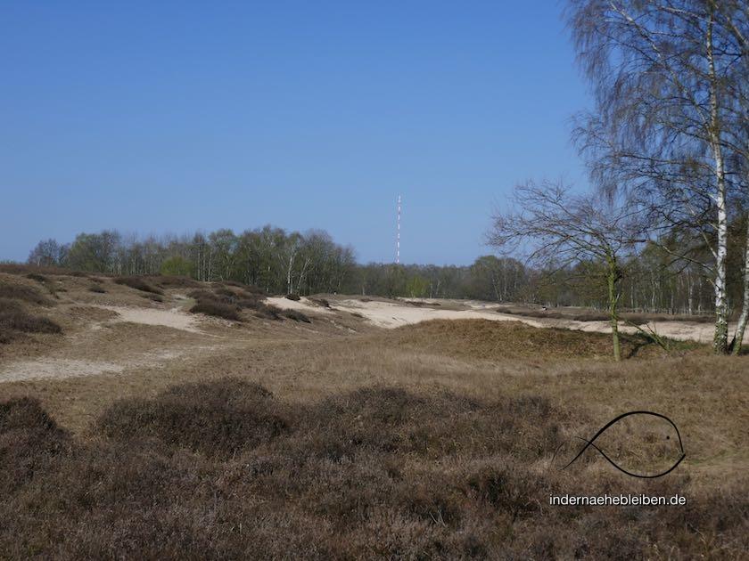 Heide Boberger Dünen