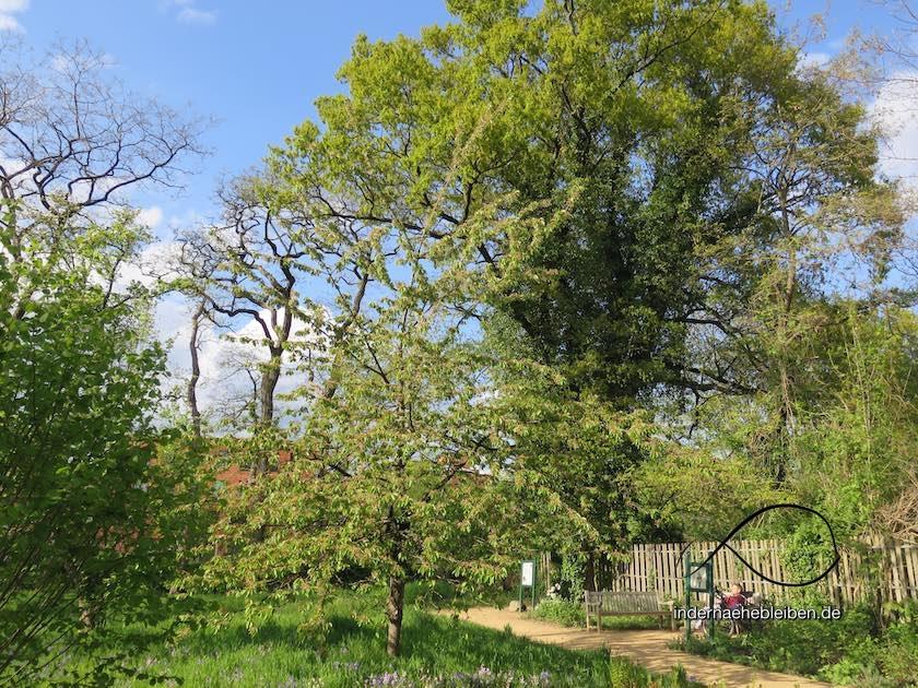 Garten de laigle
